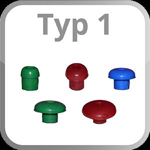 Typ 1