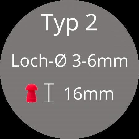 Typ 2