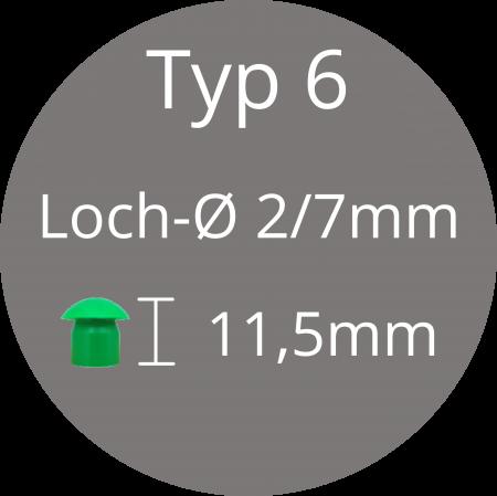 Typ 6